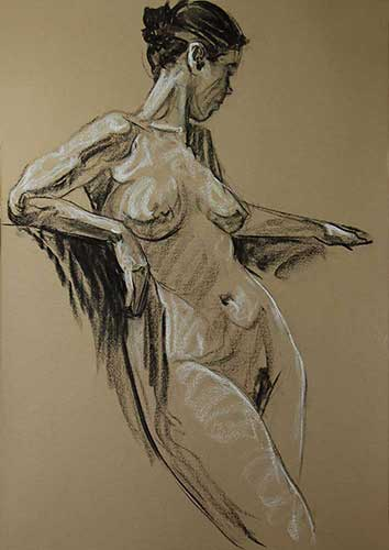 drawings in charcoal Willow F